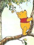 Pooh Cute 1965