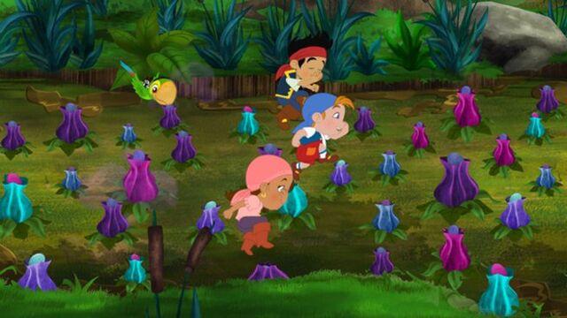 File:Jake & crew Stinkpot swamp-Never Say Never!.jpg