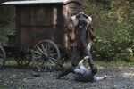 Once Upon a Time - 6x07 - Heartless - Photography - David and Woodcutter