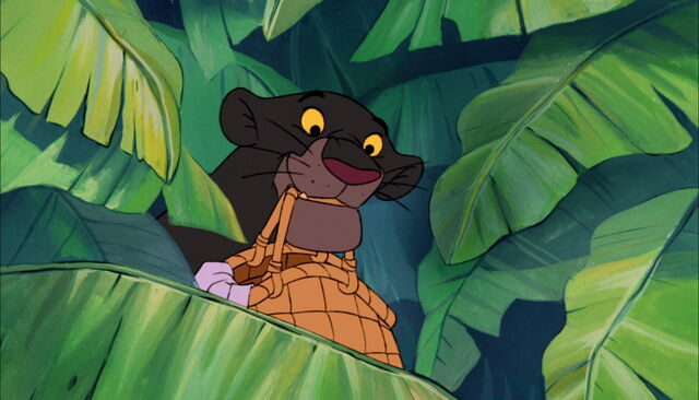File:Bagheera The Black Panther has a basket in his mouth.jpg