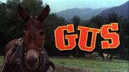 Gus Title Card