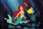 THe little mermaidFriends