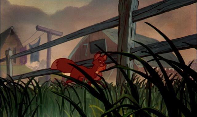File:Fox-and-the-hound-disneyscreencaps.com-158.jpg