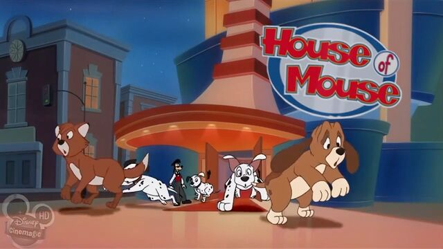 File:House Of Mousedogsandcats3.jpg