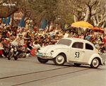 Herbie 6