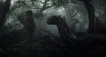 Jungle Book 2016 83