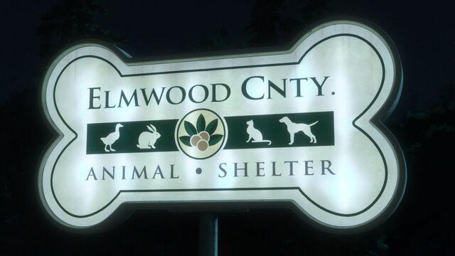 File:Elmwoodcountyanimalshelter.jpg