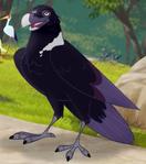 TLG Raven
