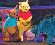 Pooh live cp 9081956
