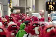 140228-muppets-animals a9746a83750818e8d6909f049da0d427
