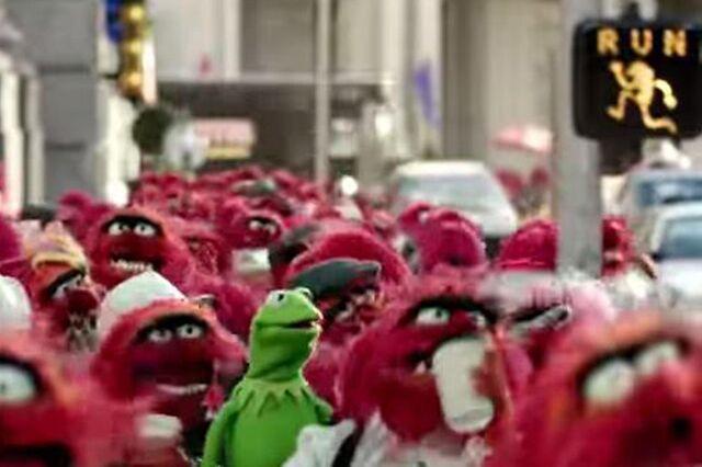File:140228-muppets-animals a9746a83750818e8d6909f049da0d427.jpg