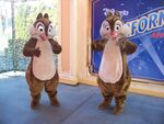 Chip N Dale playing around at the visa awards