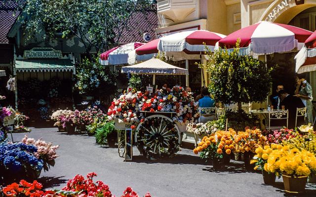 File:FlowerMarket.png