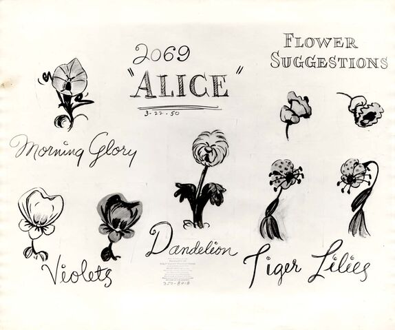File:Model sheet 350-8018 flower suggestions morning glory, violets, dandelion, tiger lilies blog.jpg