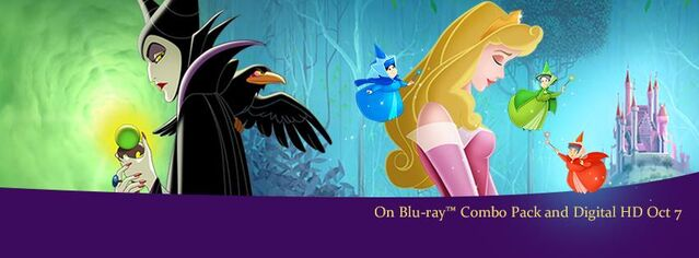 File:Sleeping Beauty Diamond EditionBanner.jpg