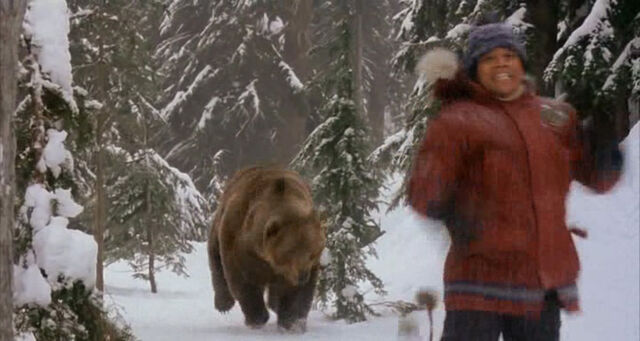File:Ted Brooks chased by a grizzly bear.jpg