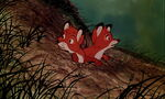 Fox-and-the-hound-disneyscreencaps.com-8324