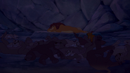 Background Lionesses Cave Sleeping