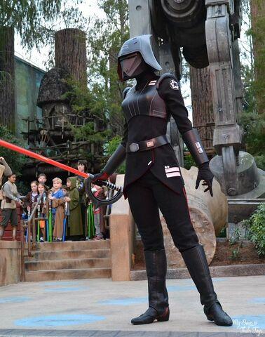 File:Seventh Sister at Disney Parks 23.jpg