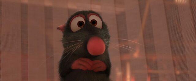 File:Scaredy rat.jpg