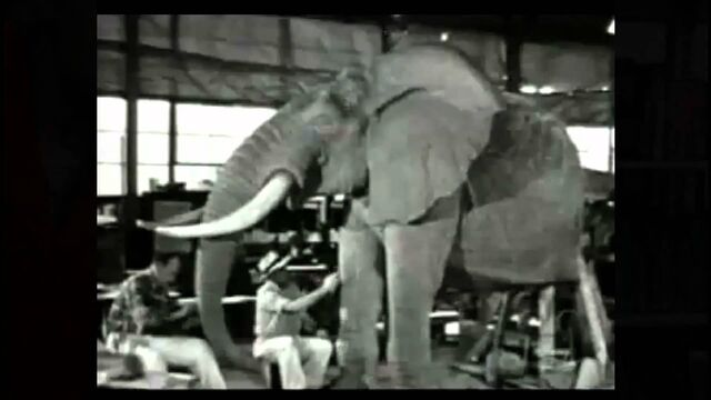 File:Elephant from A Progress Report.jpg