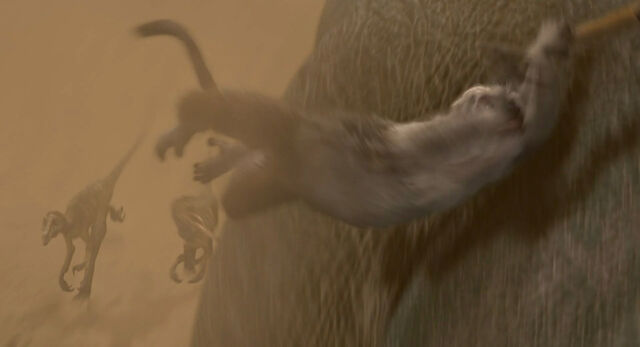 File:Dinosaur-disneyscreencaps com-2855.jpg