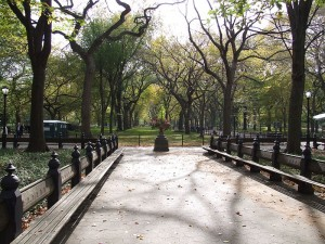 File:New-york-central-park-walkway-300x225.jpg.jpeg