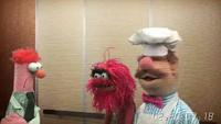 Muppets-com36