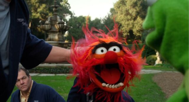 File:Muppets2011Trailer02-80.jpg