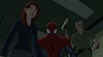 MJ Spider-Man Stan USM 1