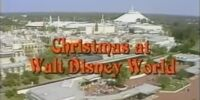 Christmas at Walt Disney World