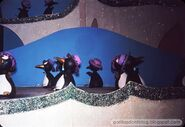 NYWF-IASW-Penguins