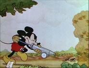 Mickey's Garden-03