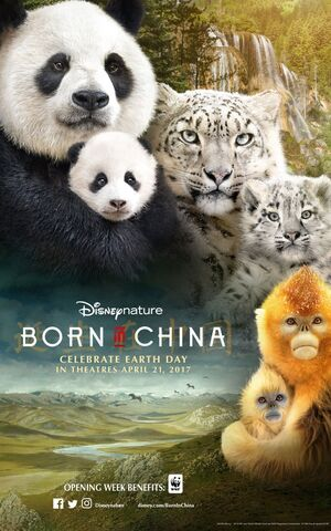 File:Born in China - Poster.jpg