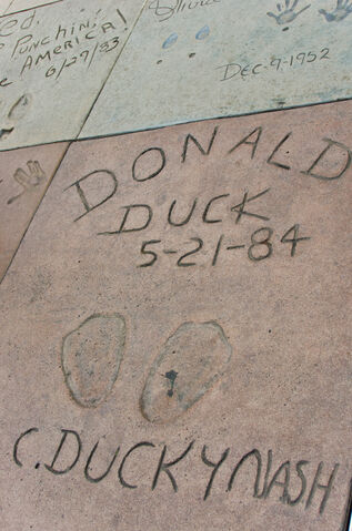 File:Donald Duck in Grauman's Chinese Theatre.jpg