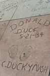 Donald Duck in Grauman's Chinese Theatre