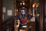 Ant-Man (film) 77