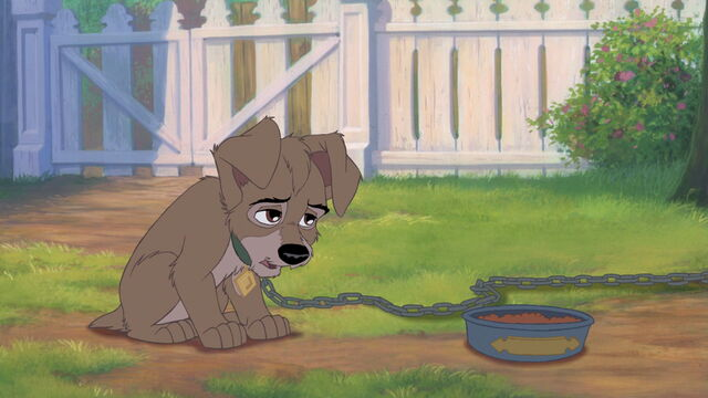 File:Lady-tramp-2-disneyscreencaps.com-841.jpg