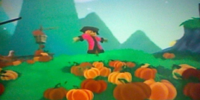 The Pirate Pumpkin Patch