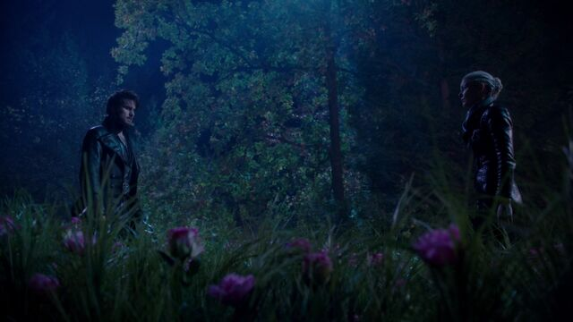 File:Once Upon a Time - 5x10 - Broken Heart - Summoned Hook.jpg