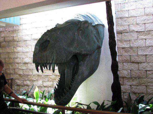 File:Dinosaurs0021head.jpg