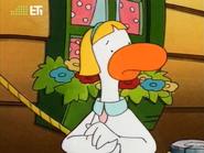 Shirley Duck