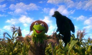 File:2005-muppetsoz-02.jpg
