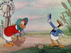 Donald-duck-1st-02