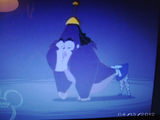 File:Kronk (Gorilla with Female legs).JPG