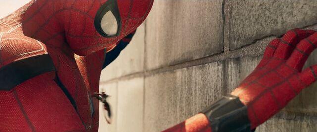 File:Spider-Man Homecoming 25.jpg