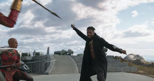 File:Black Panther (film) 44.jpg