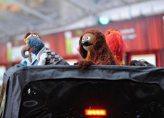 File:TheMuppets-WorldPremiere-ElCapitan-(2011-11-12)-16.jpg