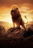 Aslan Roar's
