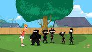 PnF Ninjas